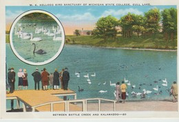 CPA - W. K. KELLOGG BIRD SANCTUARY OF MICHIGAN STATE COLLEGE - GULL LAKE - BETWEEN BATTLE CREEK AND KALAMAZOO - 20 - - Etats-Unis