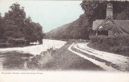 Postcard Clivedon Woods From Cookham Ferry Nr Maidenhead And Marlow Berkshire My Ref  B12211 - Inghilterra