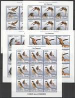 W186 IMPERFORATE 2009 UNION DES COMORES FAUNA BIRDS LES FAUCONS !!! 9SET MNH - Adler & Greifvögel