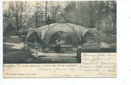 Bruxelles Jardin Botanique : La Serre Des Plantes Aquatiques - Bruxelles (Città)