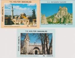 Lot 3 Tickets De Visites Année 1990 TUrquie Ste Sophie Agya Sophya, Palais De Topkapi, Journée Cappadoce - Tickets - Vouchers