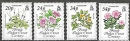 British Indian Ocean Territory 1993 Christmas Noel Fleurs Flowers Diverses, 4 Val MNH - Territoire Britannique De L'Océan Indien