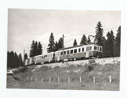 Suisse Neuchatel Cpm Train Pour La Chaux De Fonds Près Creux Aux Biches 1970 - NE Neuchâtel