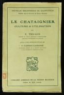 ( Sylviculture  Horticulture  ) LE CHATAIGNIER Culture Et Utilisation P. TRICAUD 1913 - Jardinería