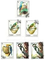 1972 - Sharjah - Uccelli - Climbing Birds