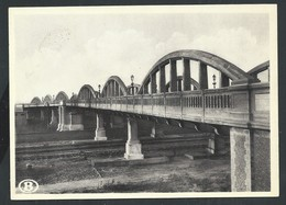 +++ CPA - Pont Route De La Rue Du Lion à SCHAERBEEK - Société Nationale Des Chemins De Fer Belges   // - Schaerbeek - Schaarbeek