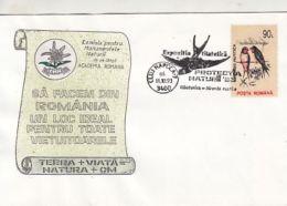 D4073- BARN SWALLOW, BIRDS, SPECIAL COVER, 1993, ROMANIA - Swallows
