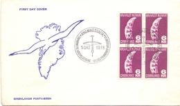 GROENLANDIA 1978 COVER FDC MAXIMUM  1965  (MAGG180325) - Stamps