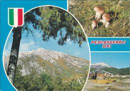 L'AQUILA - Pescasseroli Opi - Alta Valle Del Sangro - 3 Vedute - Funghi Porcini - Fungo - 1984 - L'Aquila