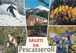 L'AQUILA - Pescasseroli - Alta Valle Del Sangro - 6 Vedute - Sport Invernali - Sci - Funghi E Flora Tipica - 1974 - L'Aquila