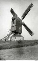 KESSEL - Gem. Peel En Maas (Limburg) - Molen/moulin - De Verdwenen Standerdmolen Van Jacobs Ca. 1925. TOP !!! - Nederland