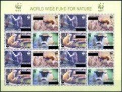 SIERRA LEONE  2008  WWF Monkeys New Currency Overprint Sheetlet Of  16v. Perf. Rare! - W.W.F.