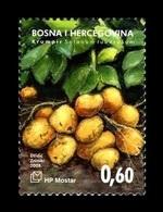 Bosnia And Herzegovina (Croatian) 2008 Mih. 241 Flora. Vegetables. Potato MNH ** - Bosnia And Herzegovina