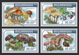 MOZAMBIQUE 2018 MNH** Mushrooms Pilze Champignons 4v - IMPERFORATED - DH1818 - Pilze