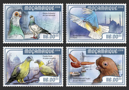 MOZAMBIQUE 2018 MNH** Pigeons Dove Tauben 4v - IMPERFORATED - DH1818 - Tauben & Flughühner