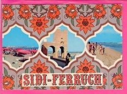 Cp  Carte Postale  - Sidi Ferruch - Algérie