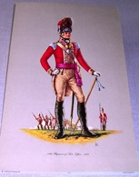 Illustration « 14th Regiment Of Foot.  Officer.  1802 – Patrician Art Products Ltd - Lithographies