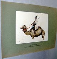 """Illustration « Armée D'Egypte – Régiment Des Dromadaires"""" ED. DETAILLE – Graveur Imprimeur GILLOT - Lithographies"""