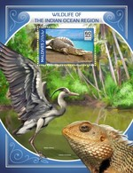 Maldives 2018, Animals Of Indian Oceans, Croccodile, Bird, Iguana, BF - Marine Web-footed Birds