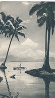 TONGA - N° V - L'ILE DES AMIS (DIM 10,5 X 18) (PUBLICITE LABORATOIRE LA BIOMARINE AU DOS) - Tonga