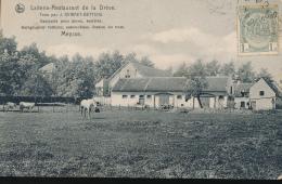 BELGIQUE MEYSSE MEISE LAITERIE RESTAURANT DE LA DREVE - Meise
