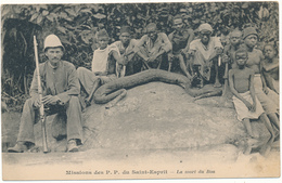 AFRIQUE - La Mort Du Boa, Chasse - Missions Des P.P. Du Saint Esprit - Cartes Postales