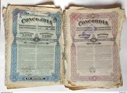 Concordia Romana  Roumaine 9 X 10 Actions  60 X 250 Actions Au Porteur De Deux Cent Cinquante Lei - Pétrole