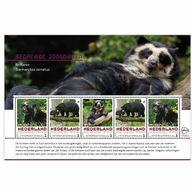 Nederland 2017 Endangered Species 21  Brilbeer Sheetlet    Postfris/mnh/sans Charniere - Periode 1980-... (Beatrix)