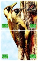 BIRD WOODPECKER PUZZLE OF 4 PHONE CARDS - Pájaros Cantores (Passeri)