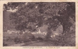 01 / CORMARANCHE EN BUGEY / LE TILLEUL DE SULLY - Otros Municipios