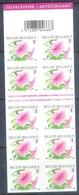 F69- Belgium 2007. Flowers. Booklet Of 10 Stamps. - Belgium