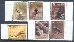F82- Jordan 2006. Desert Reptiles. Lizards Snakes & Other. - Jordan