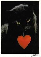 Chat Noir Avec Un Coeur Rouge (2 Scans) - Cats