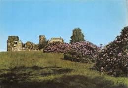CPM - 61 - CERISI-BELLE-ETOILE - Le Château Et Les Rhododendrons - France