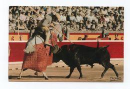 Postcard 1960s SPAIN ESPAÑA BULLFIGHT TOROS TORADA BULL HORSE HORSES PDERDE - Stieren