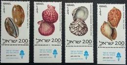 ISRAEL  # 678-81  -  RED SEA SHELLS - CONCHAS DEL MAR ROJO   -  4v  MNH  W / TAB - Israel