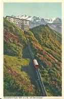 Suisse  STANSERHORN  KULM 1900 M MIT  BERERALPEN - UR Uri