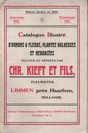 Catalogue Chr. Kieft Et Fils Limmen Hollande Automne 1910 Printemps 1911 - Garden