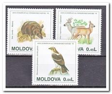 Moldavië 1995, Postfris MNH, Animals - Moldavië