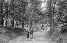 V14262 Cpa 92 Robinson - La Châtaignerie - Francia