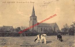 De Kerk Van O.L. Vrouw - Essen - Essen