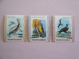 1976 Montserrat Oiseaux Birds Yvert 338/0 ** Scott Xx Michel 337/9 SG 368/70 - Oiseaux
