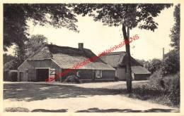 Oude Hoeve Terio - Kasterlee - Kasterlee