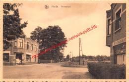 Thillostraat - Heide - Kalmthout - Kalmthout