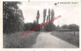 Boskapel - St-Huibrechts - Lille - Lille