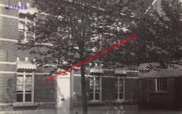Wintam - Zusterschool - Hingene - Bornem