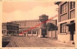 Ammoniak Fabriek - Willebroek - Willebroek