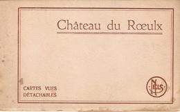 Carnet De 10 Cpa De Belgique, Château Du Roeulx, éd. Nels, Avec Serpentes, Bon état - Le Roeulx