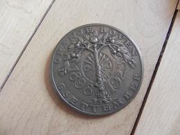 Medal - Penning - Oranje Boven - Wilhelmina 1898 - 1923 - Unclassified