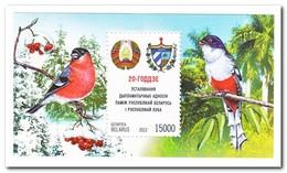 Wit Rusland 2012, Postfris MNH, Birds - Wit-Rusland